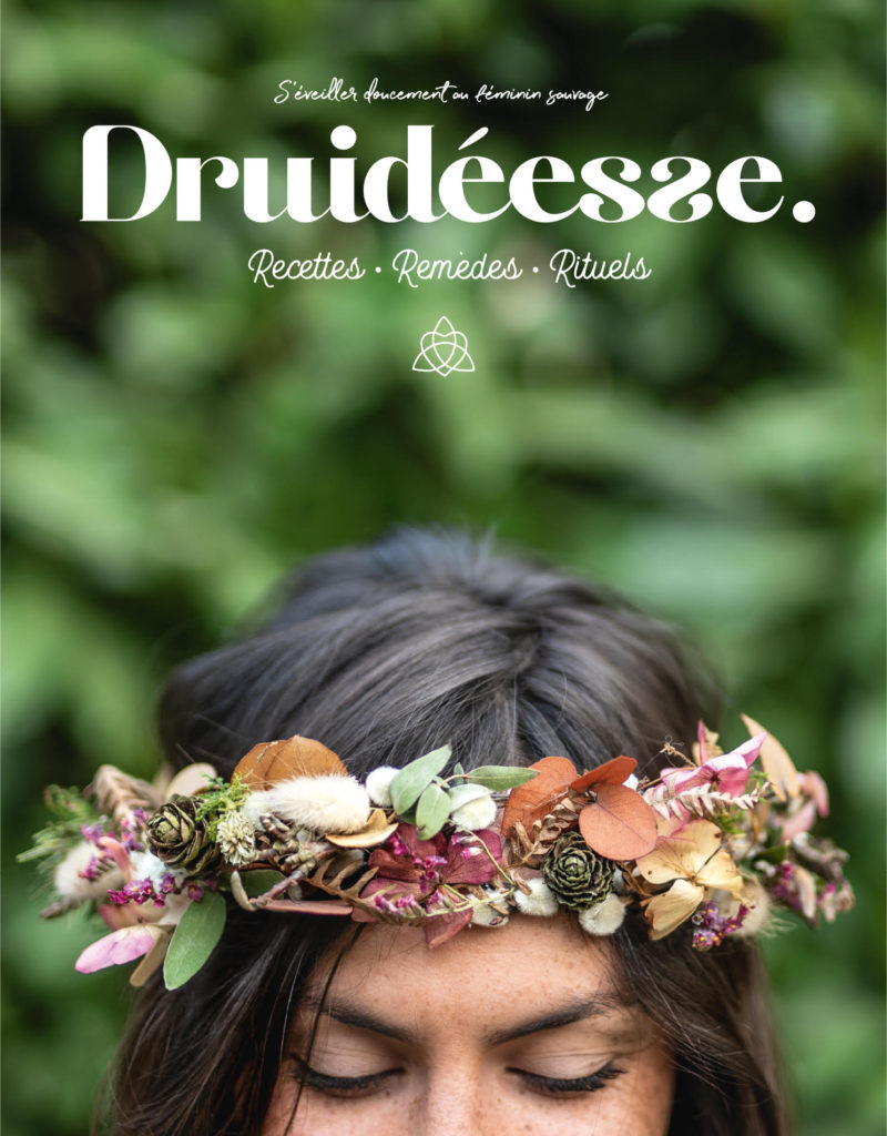 couverture-druideesse